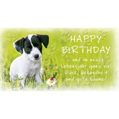 Postkarte Geburtstag, DIN lang
